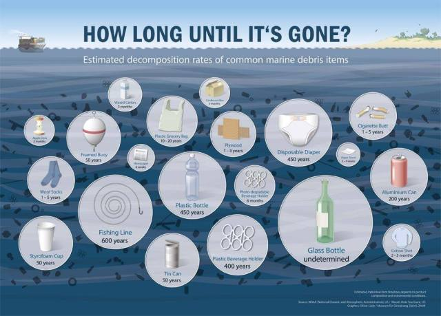 How Long Until It's Gone Infographic.jpg